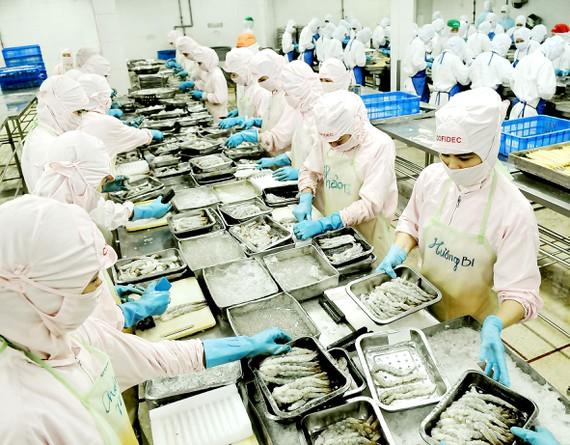 Chế biến thực phẩm xuất khẩu tại Công ty Cofidec, quận 12, TPHCM. Ảnh: CAO THĂNG.