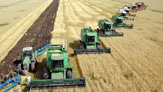 Cho đến nay mới chỉ có 8,5% diện tích đất nông nghiệp của EU được canh tác hữu cơ. Ảnh minh họa, nguồn: REUTERS.