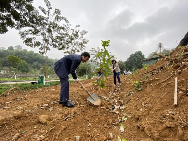 Nhiều tổ chức, cá nhân, doanh nghiệp đã tham gia hưởng ứng tích cực Đề án trồng 1 tỷ cây xanh do Thủ tướng Chính phủ phát động. Ảnh: Nguyên Huân.