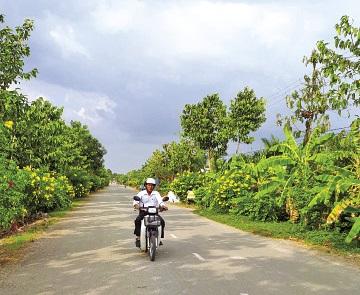 Các tuyến đường liên ấp của xã Nông thôn mới Thái Bình Trung đã được nhựa hóa khang trang sạch đẹp.