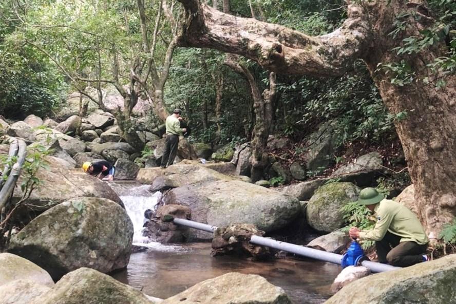 Hạt Kiểm lâm Sơn Trà - Ngũ Hành Sơn nạo vét đập, đảm bảo đủ nước phòng cháy rừng tại bán đảo Sơn Trà. Ảnh: Hạt Kiểm lâm.