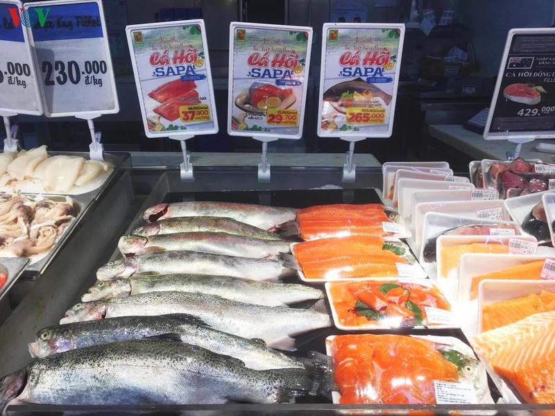 Cá hồi Sa Pa được bày bán tại hệ thống siêu thị Big C