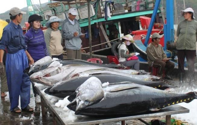 Nhiều mặt hàng hải sản thế mạnh của Việt Nam được miễn thuế nhập khẩu vào Trung Quốc.