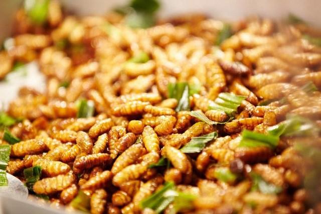 Các món ăn từ ong vò vẽ sẽ dậy vị hơn nếu nhâm nhi cùng vào ly rượu đế. Nguồn: Internet