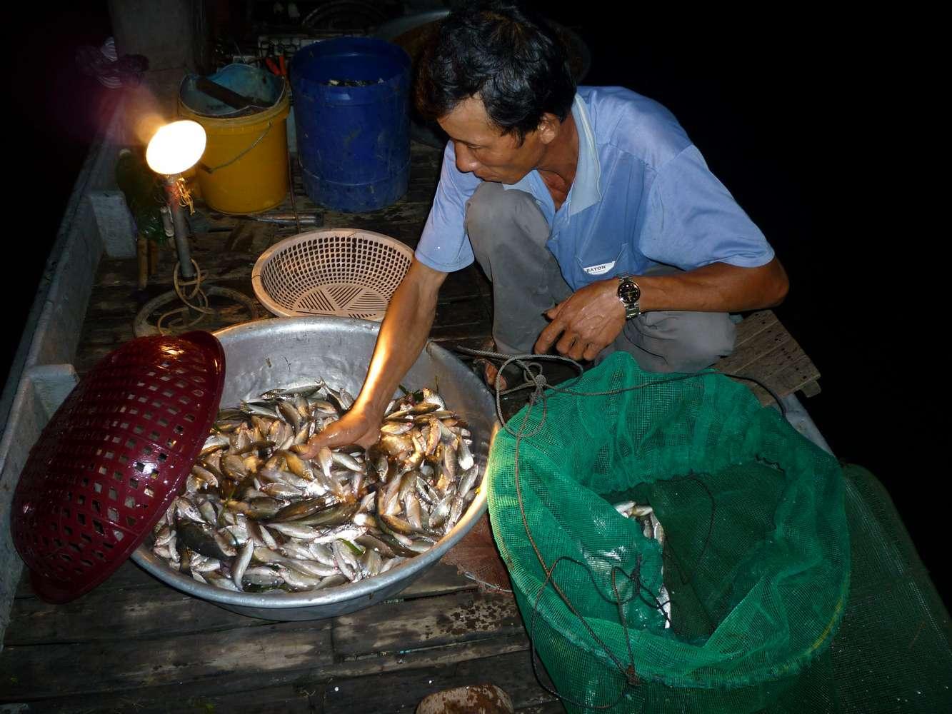 Chợ đêm gần chân cầu Tha La