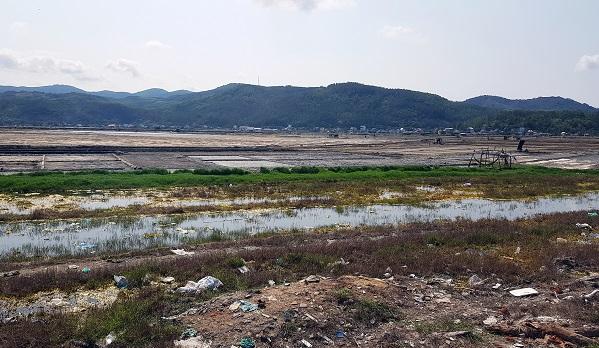 Nhiều khu vực ruộng muối Sa Huỳnh đã bị bỏ hoang và bị ô nhiễm do rác thải.
