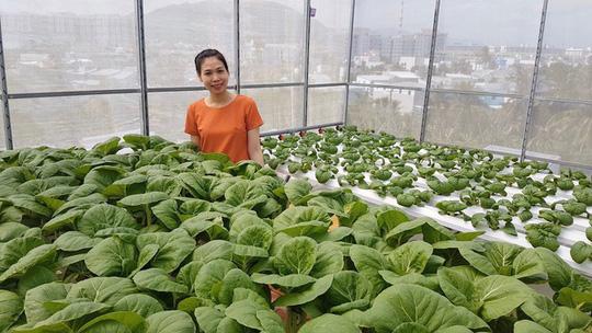 Vợ anh coi sân thượng là nơi trồng cây trái, vừa là nơi thư giãn của mọi người trong nhà.