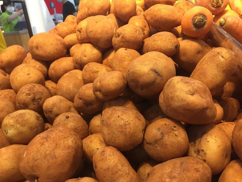 Nên ngâm và rửa kỹ khoai tây trước khi chế biến để giảm lượng kali trong chúng. Ảnh: NHẬT LINH