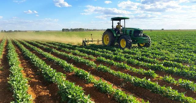 Biến đổi khí hậu không chỉ khiến thiếu lương thực mà còn tiềm ẩn cả nguy cơ ăn phải thực phẩm tự sản sinh chất độc