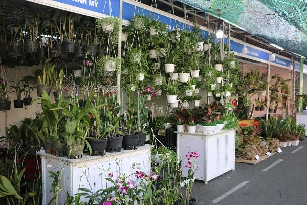 Khu vực trưng bày giới thiệu các sản phẩm hoa lan và các loại hoa kiểng.