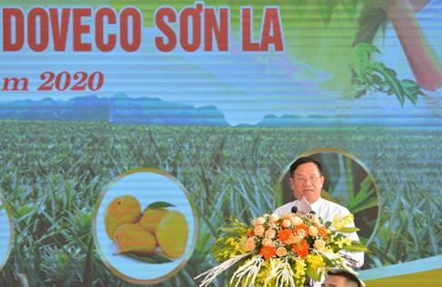 Ông Đinh Cao Khuê, Chủ tịch Hội đồng quản trị, Tổng Giám đốc Công ty cổ phần TPXK Đồng Giao phát biểu tại lể khởi công nhà máy..jpg