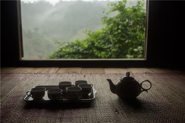 Vườn trà ngay bên ngoài ngôi nhà.