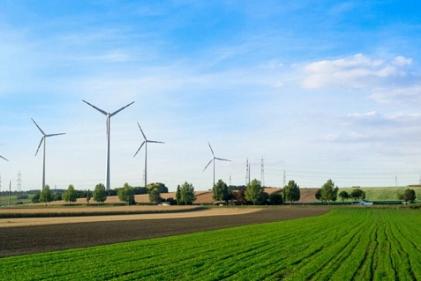 Một góc trang trại thí điểm nông nghiệp bền vững ở Đại học Wageningen. Ảnh: ERN.