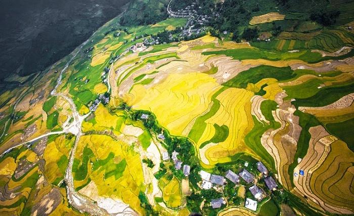 Cánh đồng ruộng bậc thanh Mường Lò, Yên Bái nhìn từ trên cao.