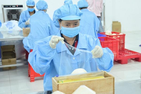 Đóng gói dừa tươi xuất khẩu sang thị trường Mỹ. Ảnh: Minh Đảm.