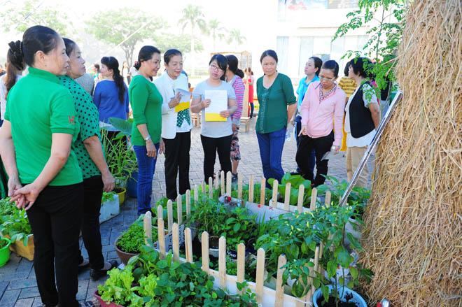 Cuộc thi trang trí tiểu cảnh nông trại sạch mang đến một sân chơi thú vị cho những người yêu thích trồng trọt và quan tâm đến thực phẩm sạch