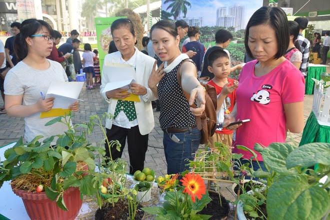 Ban tổ chức phát động cuộc thi Sống xanh cùng Phú Mỹ Hưng, với 2 hạng mục dự thi gồm Trang trí tiểu cảnh nông sản sạch và Tỉa rau củ quả