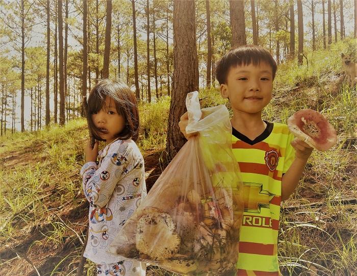 Trẻ con theo cha mẹ đi hái nấm.
