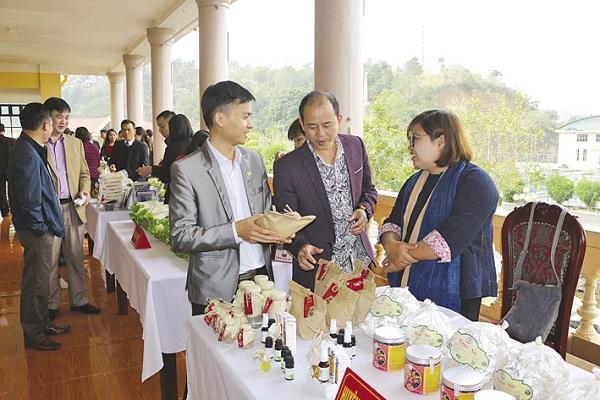 Chị Vi Thùy Dương giới thiệu sản phẩm của HTX tại các sự kiện.
